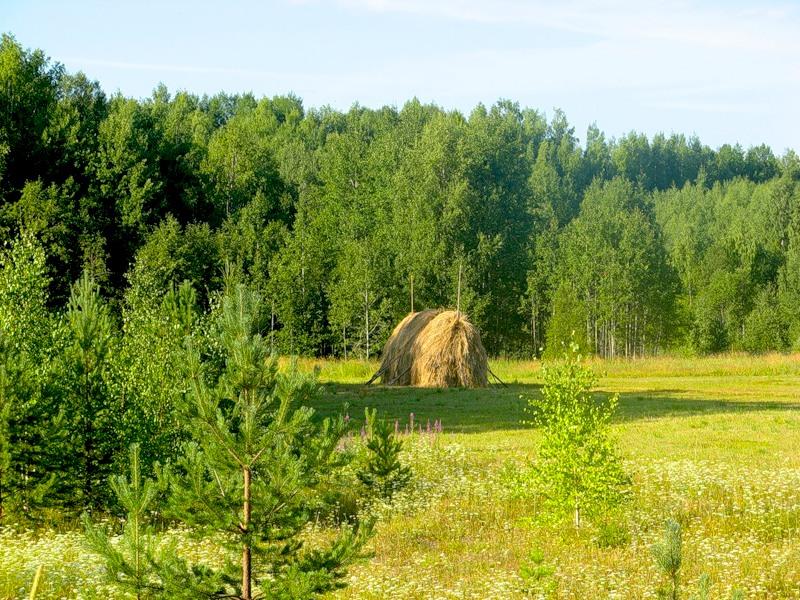 devushki-fotografiruyutsya-golimi-v-vannoy
