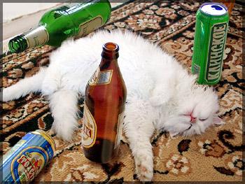 Тысяча лет пьянства.