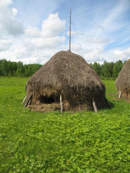 http://www.proza.ru/pics/2009/02/13/606.jpg