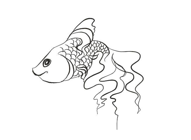 Рыбалка случаи золотая рыбка