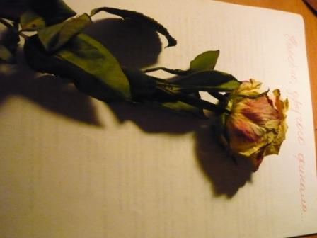 http://www.proza.ru/pics/2009/11/23/370.jpg?6504