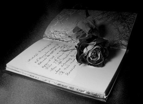 невидимка оставляет послания мелким подчерком мечтают иметь такую