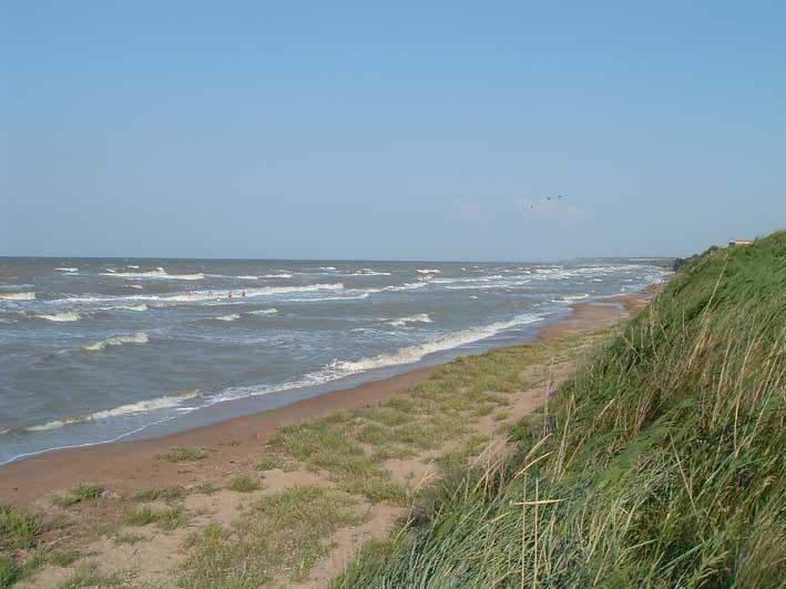 Бердянская коса в Азовском море - под угрозой исчезновения.