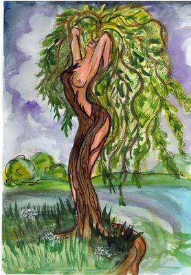 Ива- дерево женской магии.  Энергия ивы дает удивительную силу женщинам.