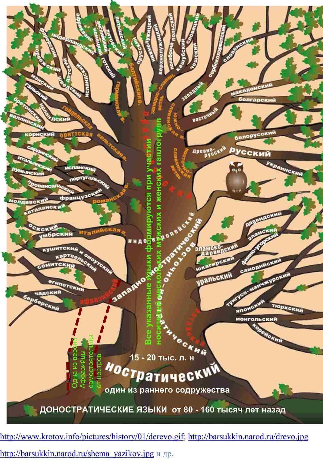 Значение русского языка схема