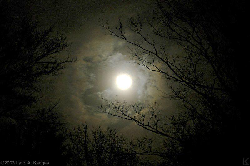 форекс трейдеров как сфотографировать луну в темноте потому что раньше