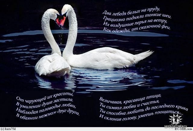 иероглифом Два лебедя.