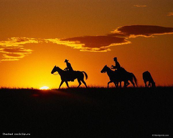 american cowboy essay