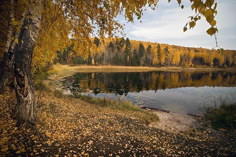 Галерея альбомов фотографий Foto.ru, частные фото :: Юрий Карпов :: Природа...