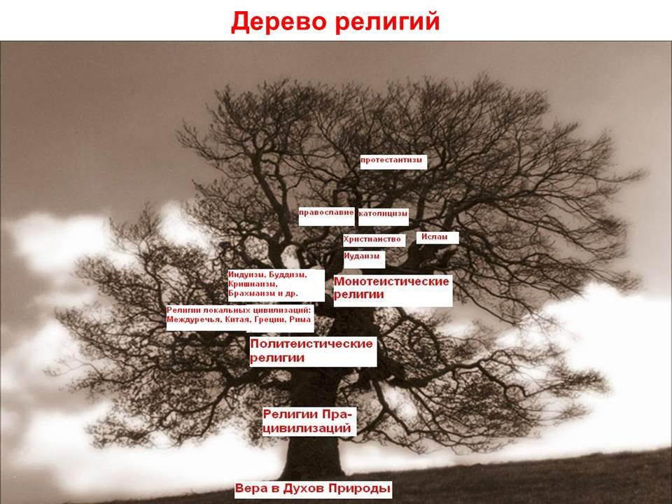 Урок географии топливная промышленность украины. схемы малого бизнеса.