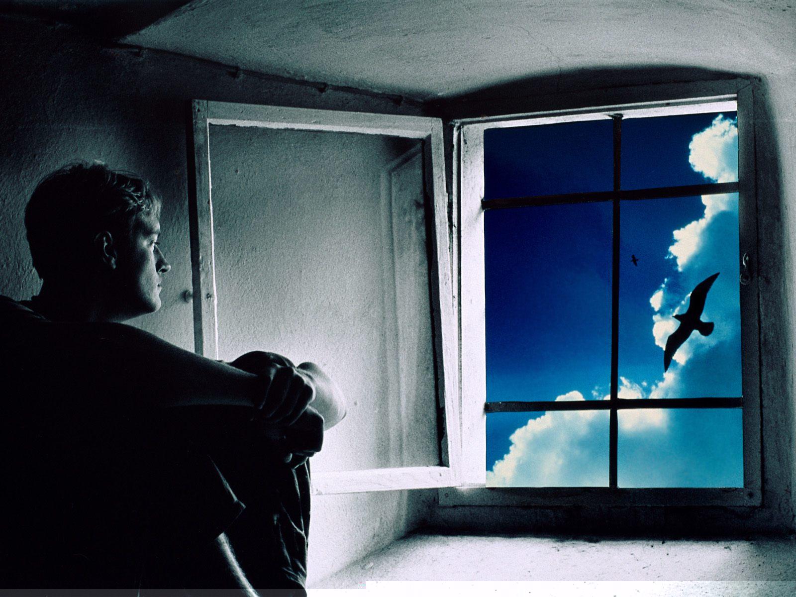 Фото раком у окна 8 фотография