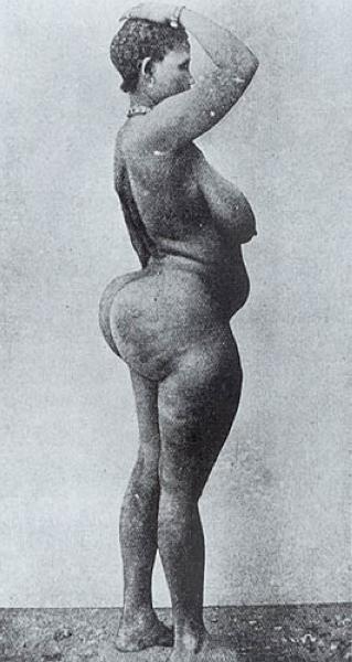 навалившихся него большие ягодицы большая грудь узкая талия африканские племена бушмены себя