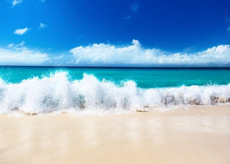 Скачать белый песок через торрент
