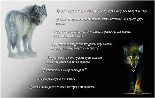Какой волк в конце побеждает притча