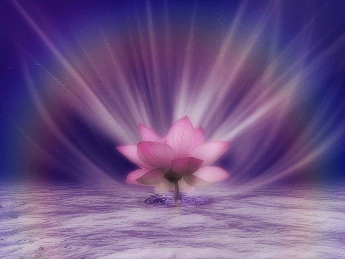 Душа как цветок лотоса