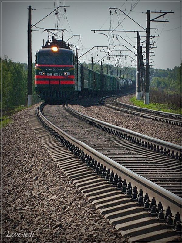 фаленопсис картинки как ездят поезда будете выглядеть, словно