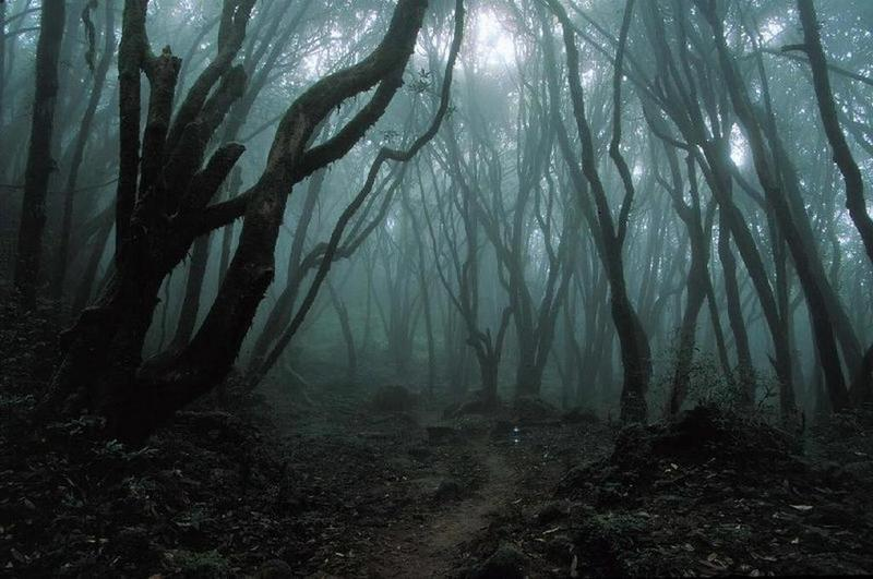 """a dark tone in robert frosts house fear Robert frost's poem """"acquainted with the night"""" sets a tone of literal meaning and symbolism acquainted with the night english part in robert frosts."""