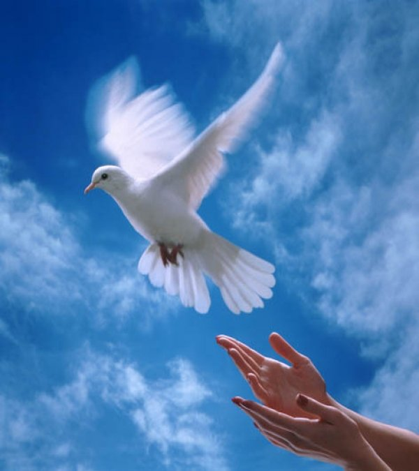 И открытки с голубками все летят ко мне из детства