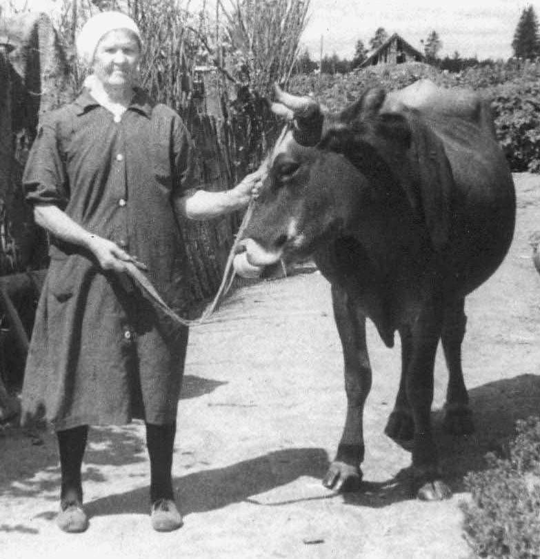 Проно онлайн зрелая русская тетя 2 фотография