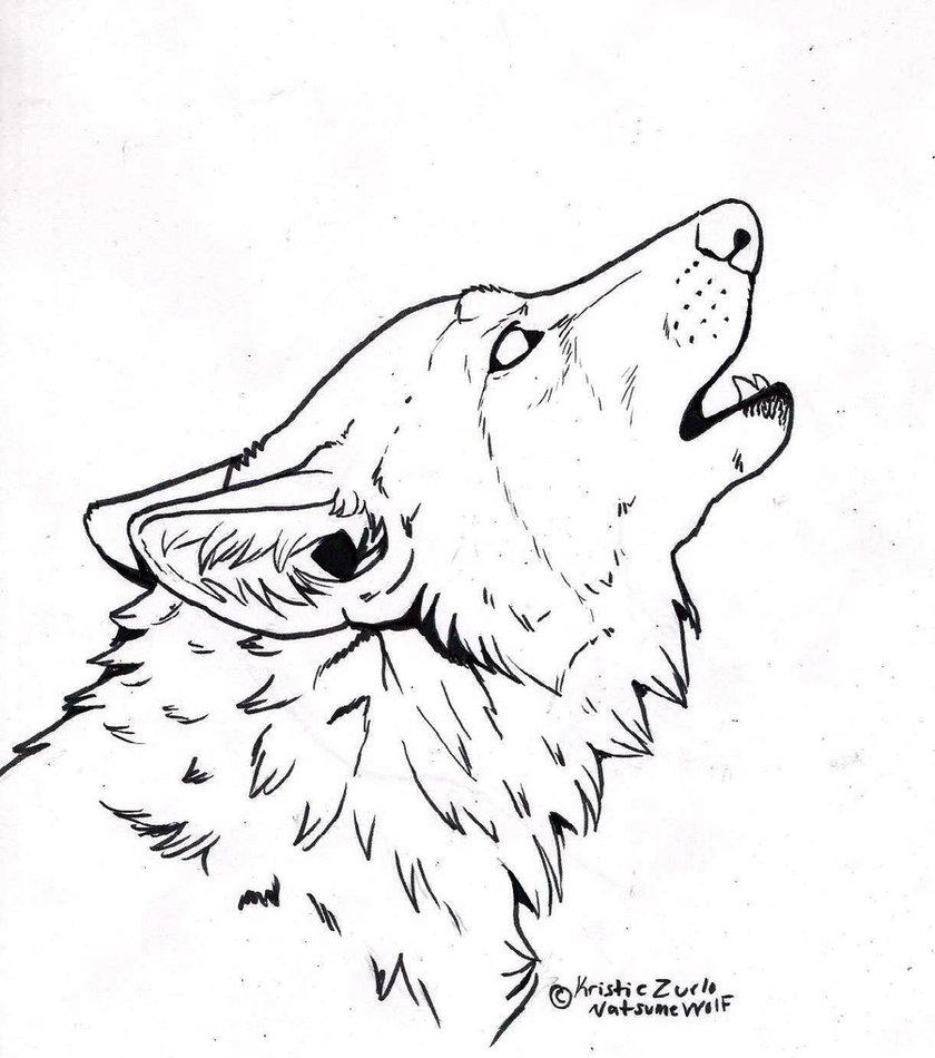 Нарисованный волк с боку