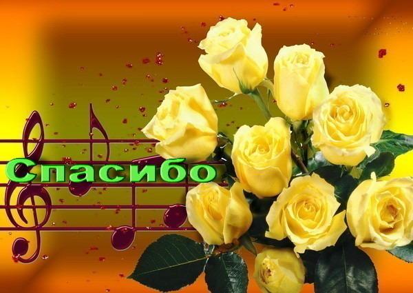 Желтые розы с поздравлениями 655
