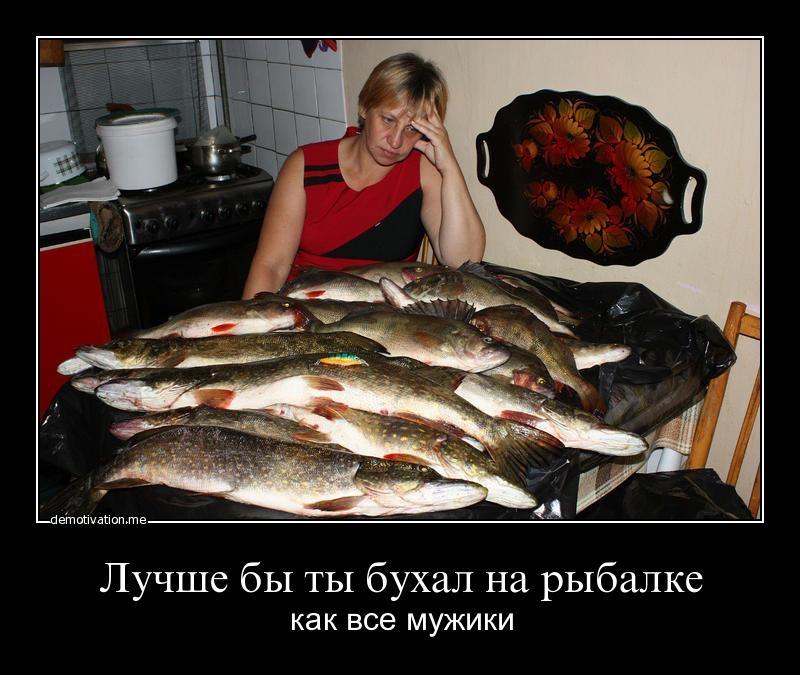 мы собрались на рыбалку я