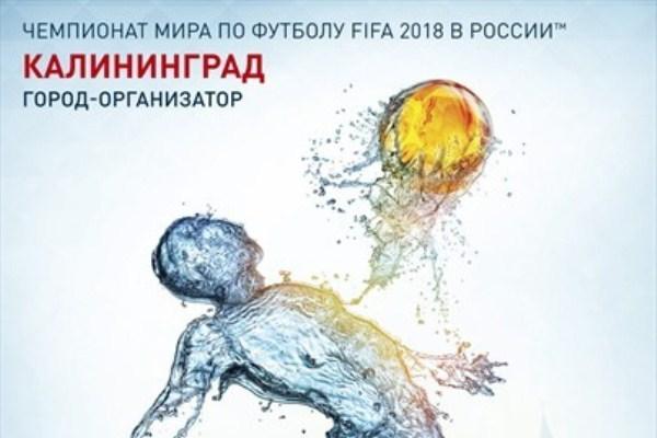 Чемпионата мира по футболу 2018 года в г калининграде