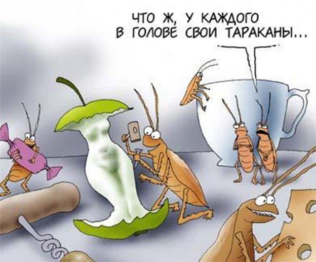 тараканы в голове картинки прикольные у мужчин изначально