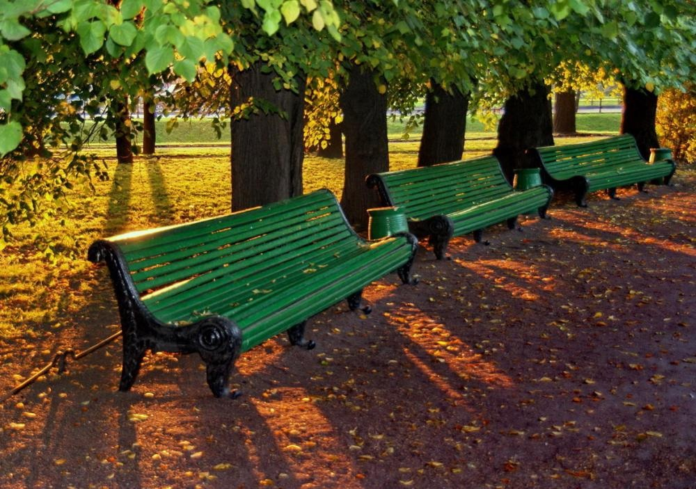 неисправность красивые скамейки на улицах спб фото государственная опера