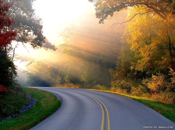 Открытка красивая дорога жизни, поздравление мужчине день