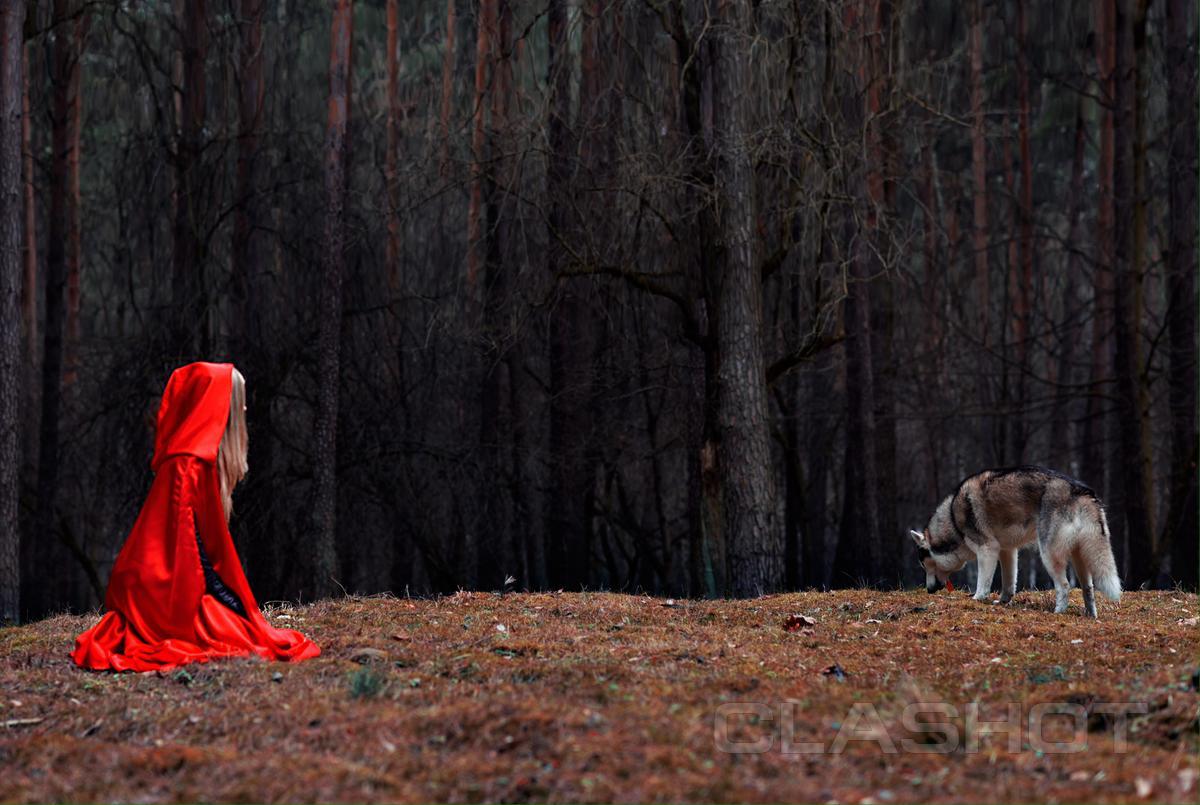 Заманили девушку в лес