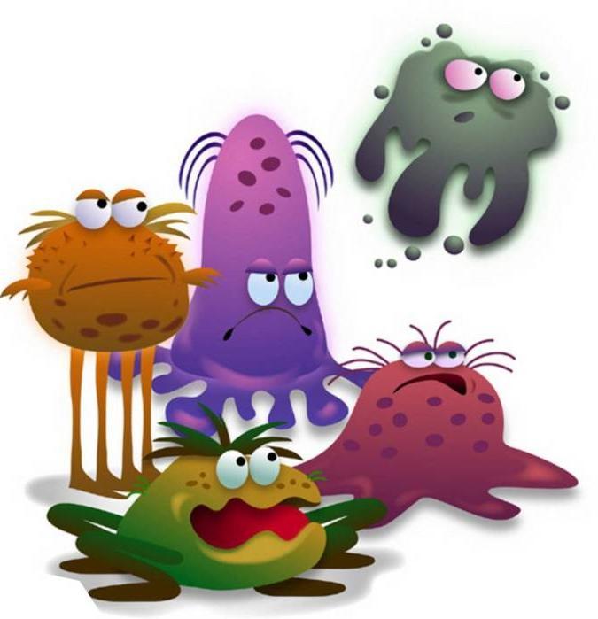 Микроб картинка прикольная, цветочек картинки