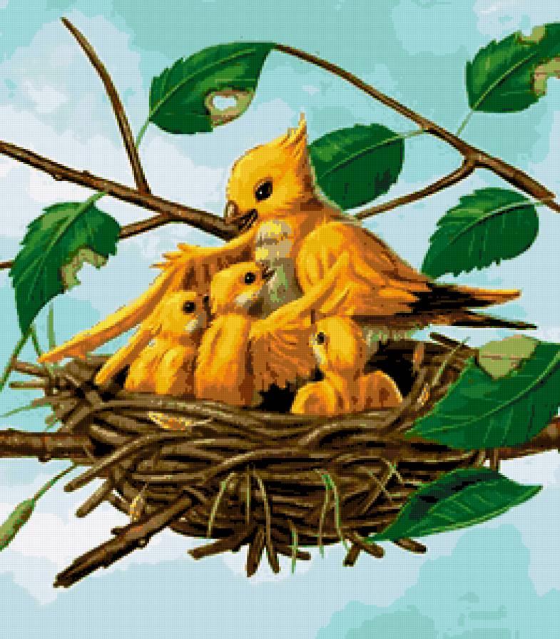 Днем рождения, картинки птенчиков для детей