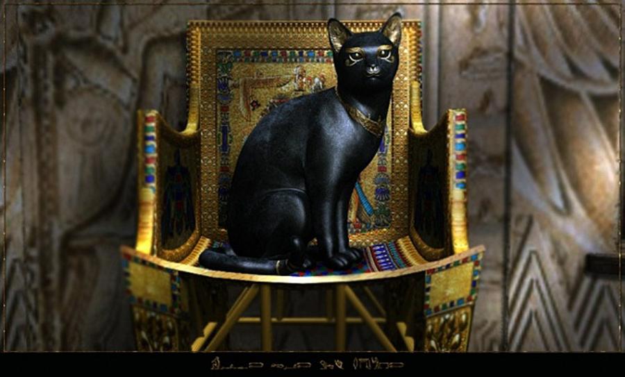 терон картинка поклоняются кошкам дворца