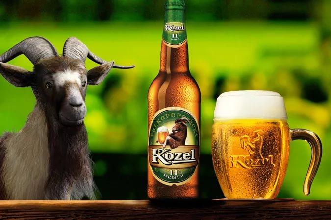 Смешные картинки пиво козел, люблю открытки