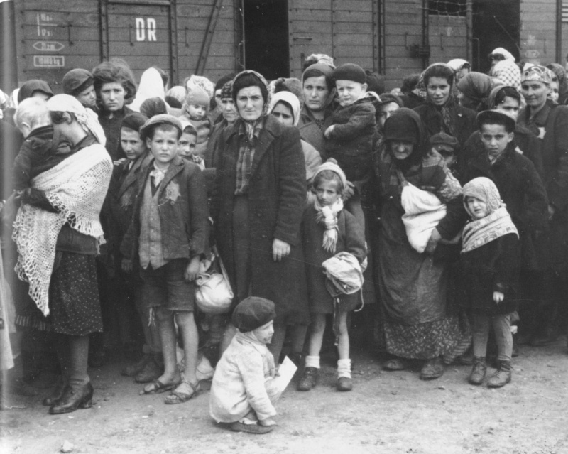 the causes of the participation of ordinary german men in the holocaust during the second world war German army's role in holocaust about the participation of many ordinary german soldiers in world war i german soldiers had deplored and.