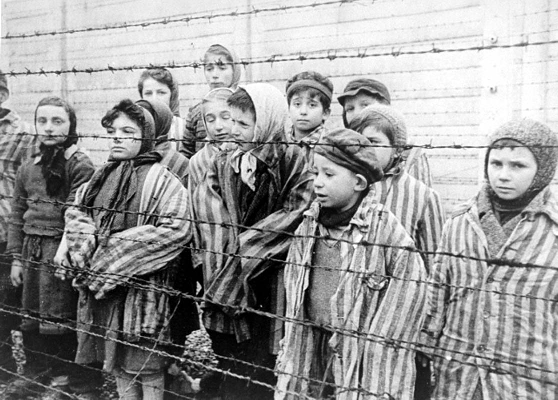 dehumanization in the holocaust Get an answer for 'where are examples of dehumanization in night' and find homework help for other night questions at enotes.