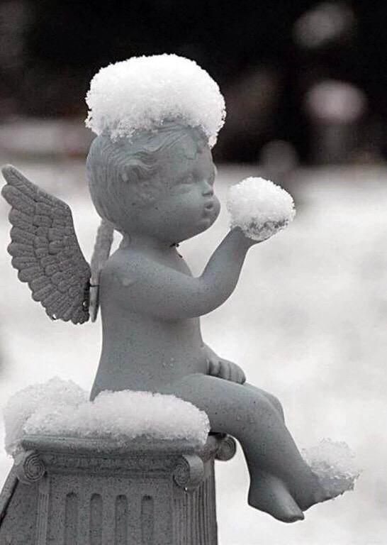 Своими, прикол картинки с ангелами