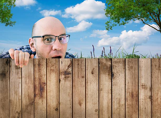 Любопытный Сосед