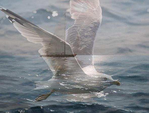 Для, картинки анимации море с чайками