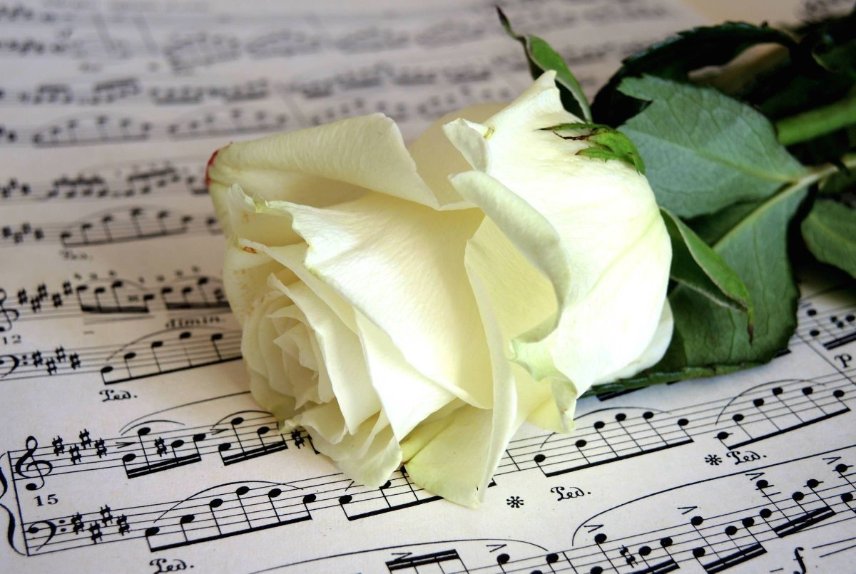 Открытки музыка любви, привет анимации