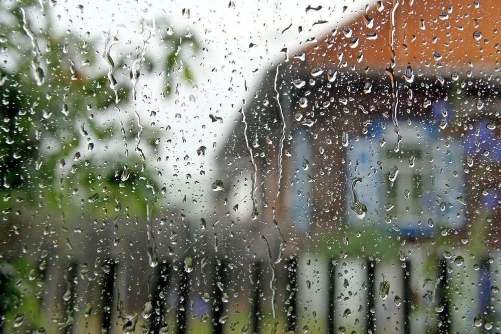 Лилии, доброе утро картинки с дождем летним