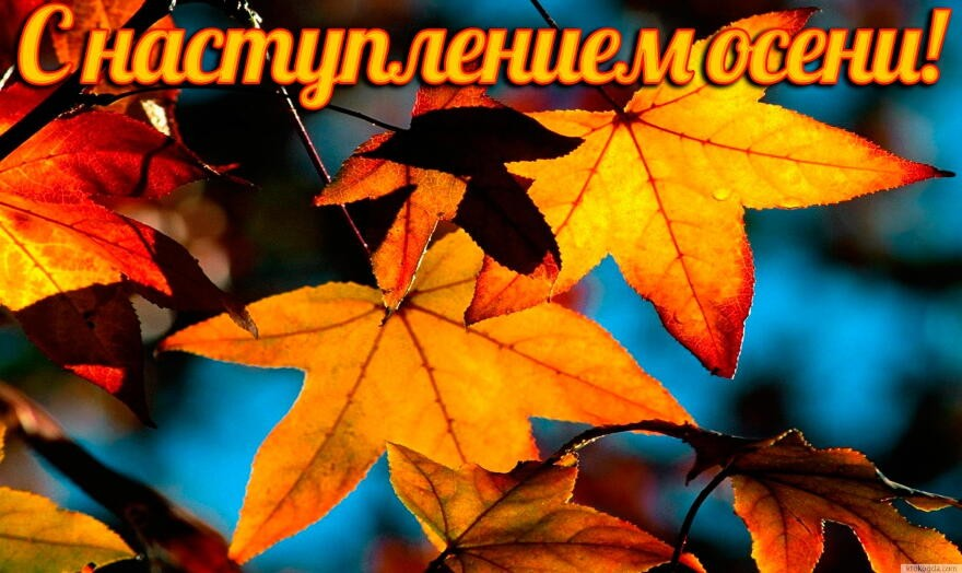Открытки наступила осень
