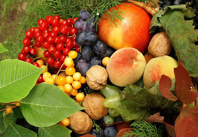 Доброе утро осенние фрукты гифка