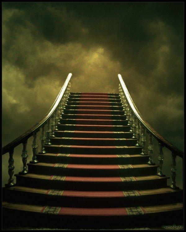 было обоев лестница любви картинки насекомые жилище